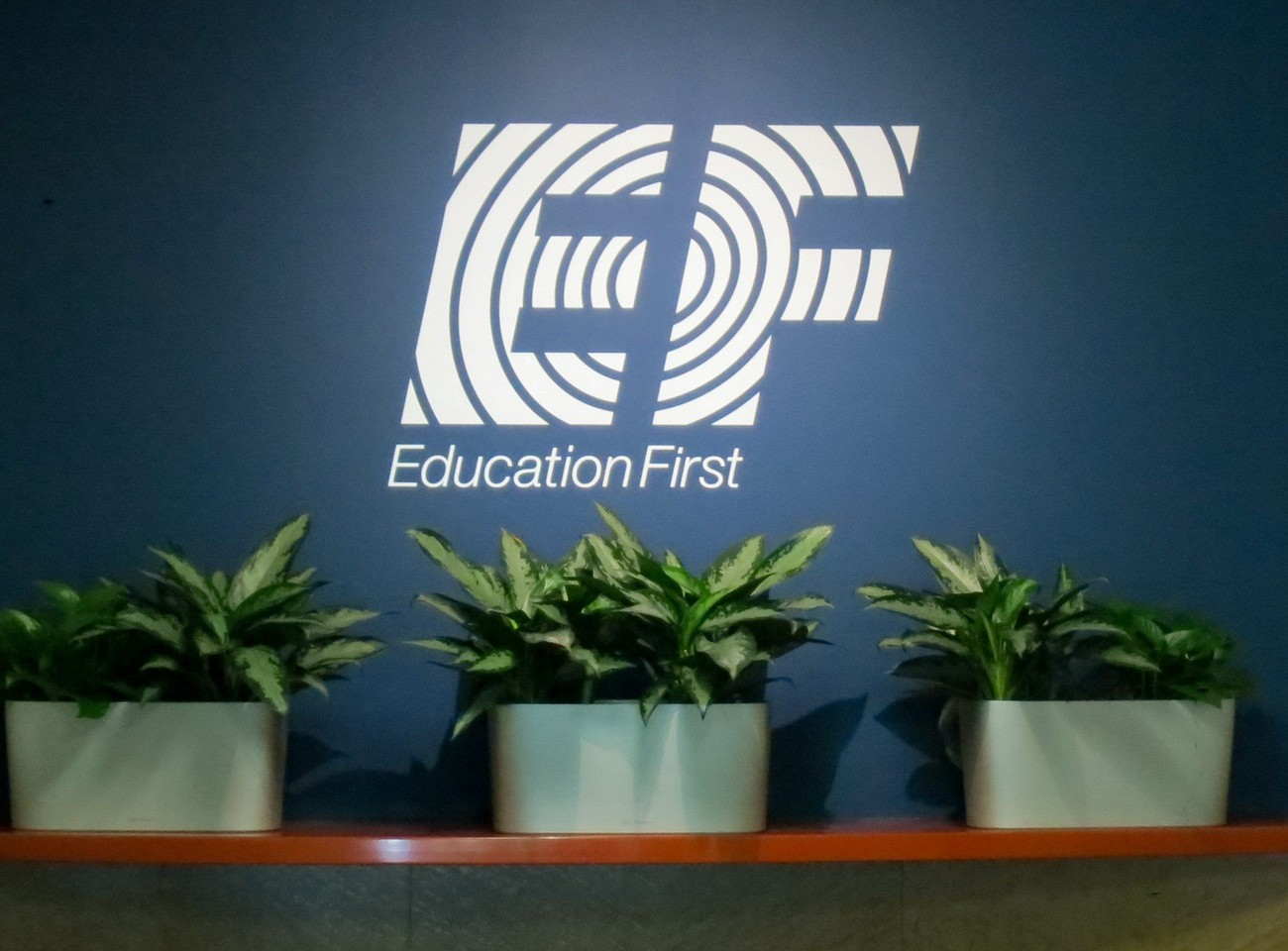 EF Education First Careers