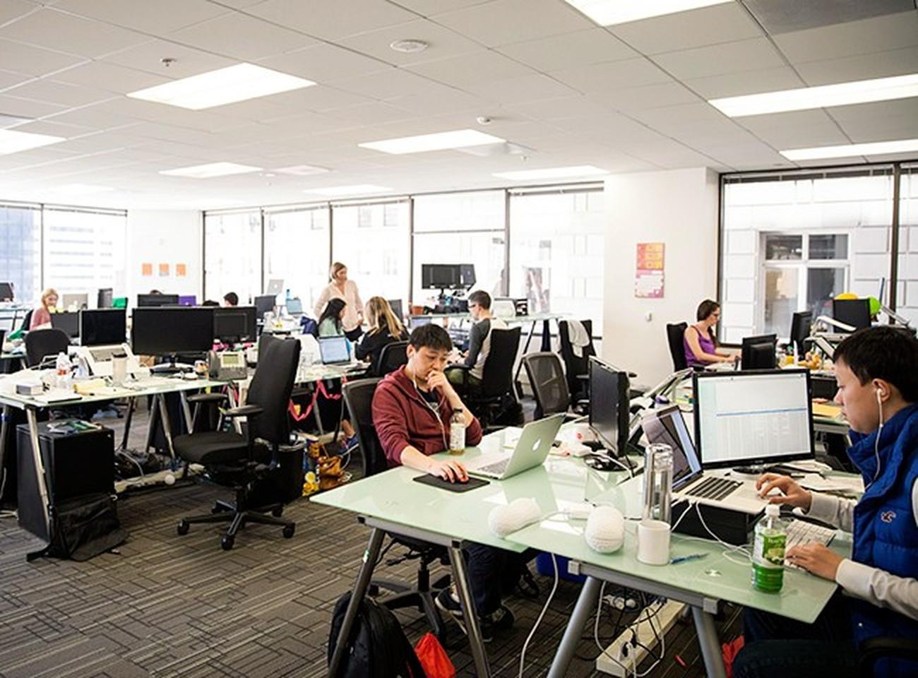 Our Office Peanut Labs Careers