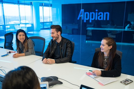 Appian Company Image