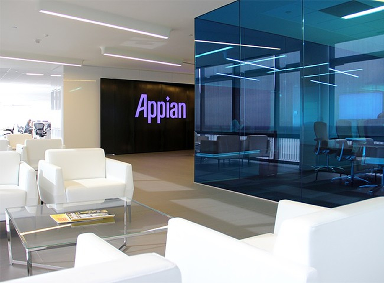 Appian Careers