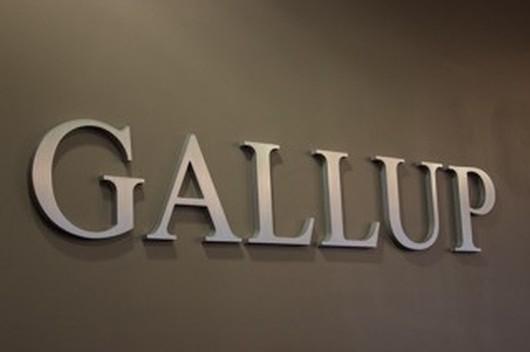 Gallup Company Image