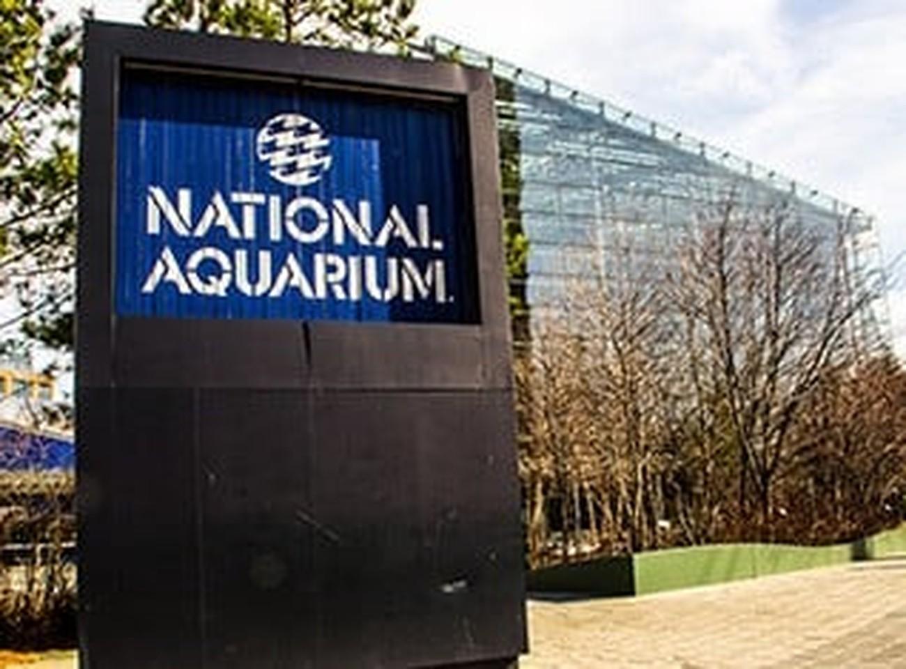 National Aquarium Careers