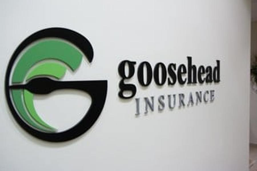 Goosehead Insurance culture