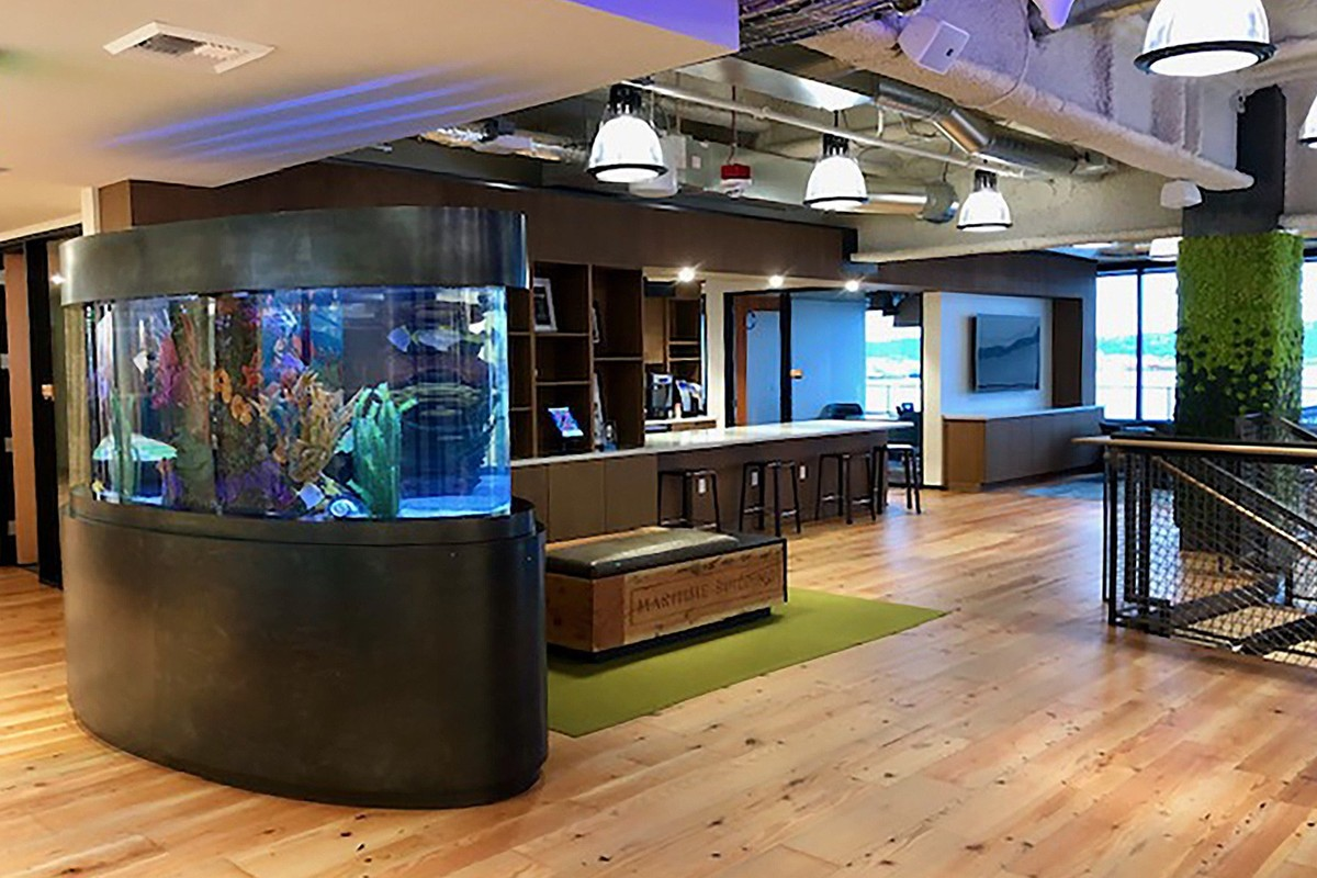 Big Fish Games company profile