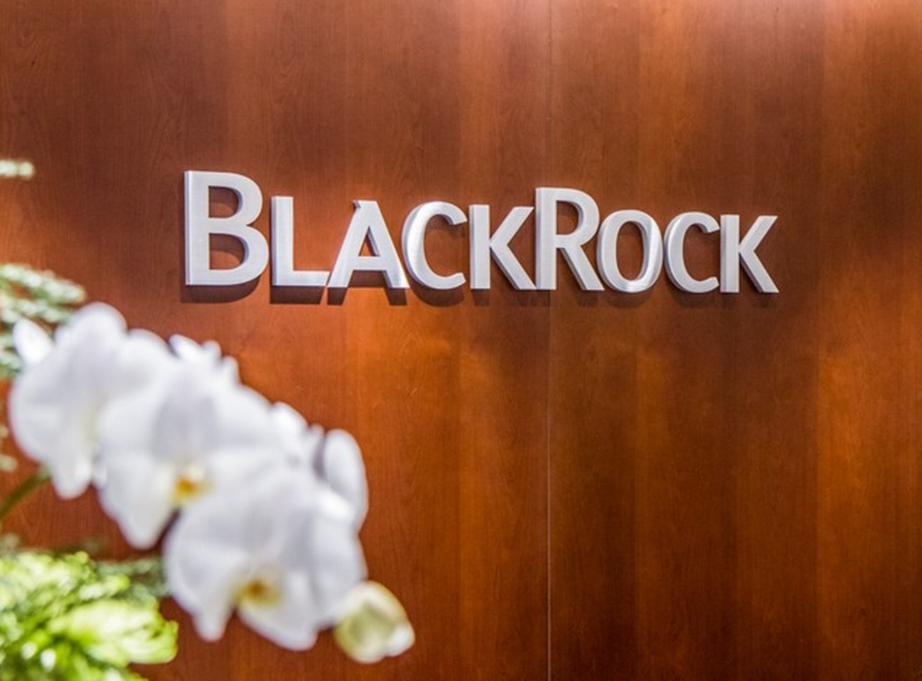 BlackRock Hong Kong | Careers