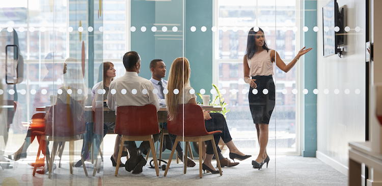 person presenting to colleagues in a conference room